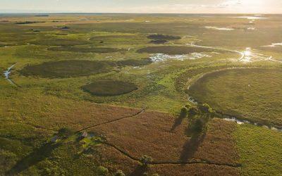 Por la Ruta del Mariscador: Por los Esteros del Iberá